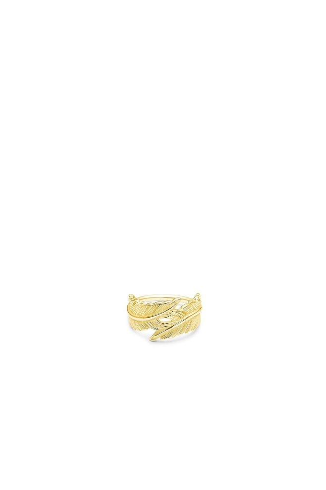 Raven ring IDR009GD