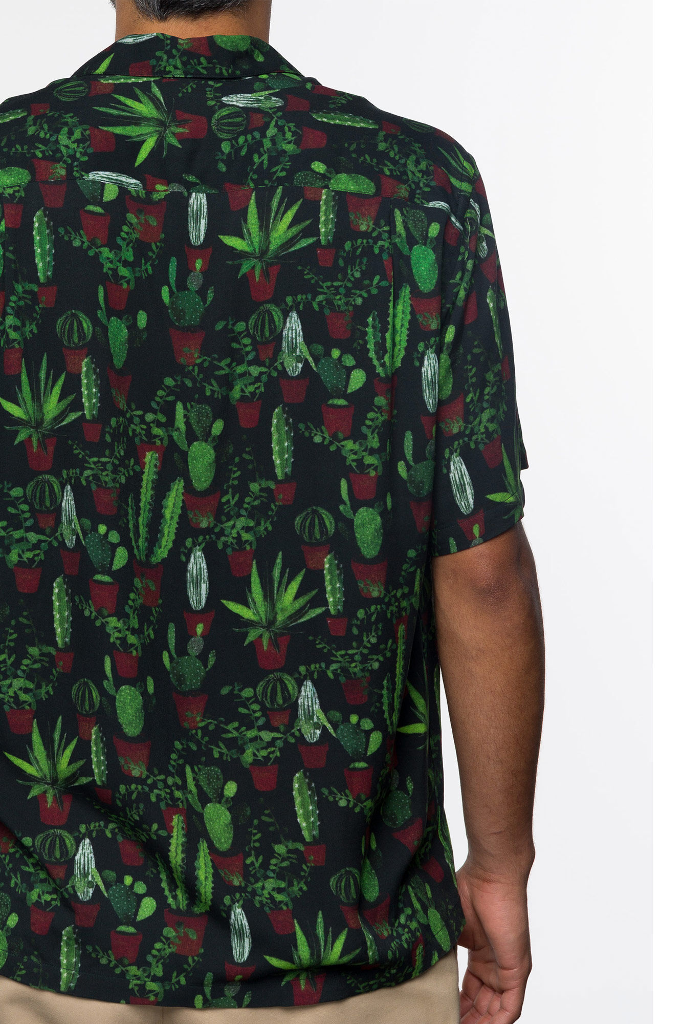 Cactus SS19017.SS, CACTUS
